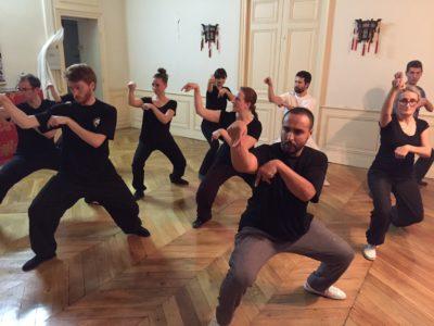Pratique du style de la mante religicuse à Lyonpar les élèves de l'Académie Tian Long