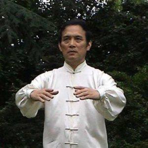 Maître SUN Fa en train de méditer dans la posture de l'arbre ou zhan zhuang