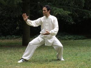 Apprendre le Tai chi chuan à Lyon,avec un maître chinois à l'Académie Tian Long